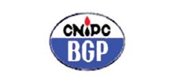 CNIDC BGP